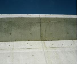 20090601-007.jpg